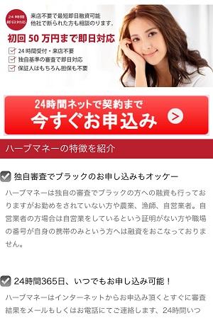 ハーブマネーの闇金融サイト
